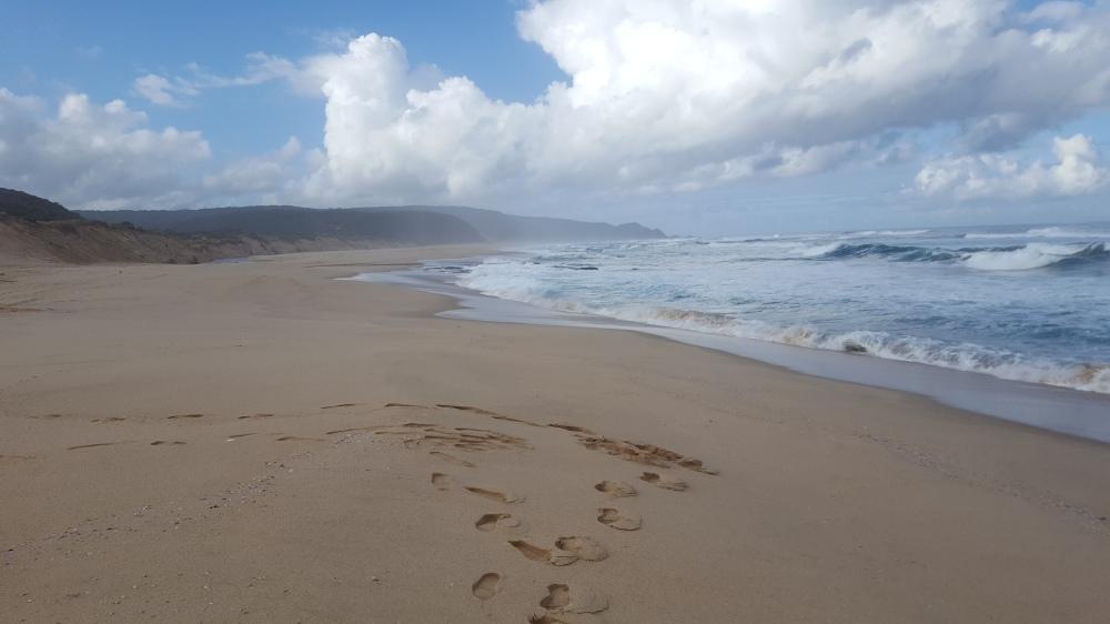 Plage déserte Johanna Beach
