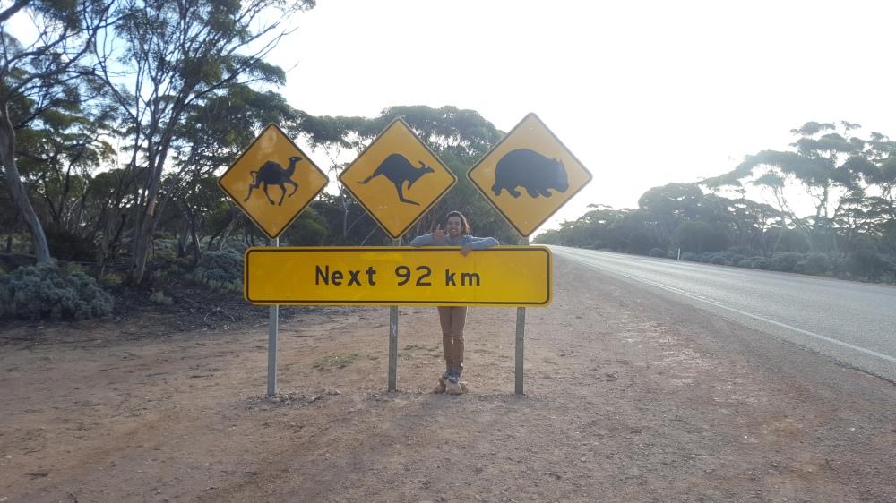 Plaine Nullarbor panneaux