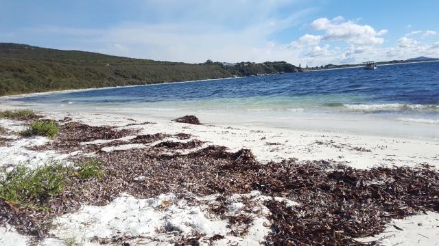 Plage Fisherman Bay Albany