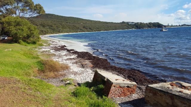 Algues Fisherman Bay